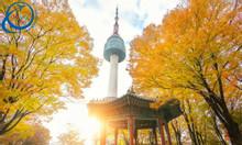 Tour du lịch Hàn Quốc hấp dẫn 5 ngày 4 đêm
