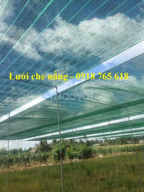 Lưới che nắng Thái Lan, Đài Loan nhập khẩu giá rẻ (ảnh 6)