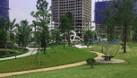 Bán căn hộ 1,9 tỷ tòa N03 -T8 Ngoại Giao Đoàn, Bắc Từ Liêm; 80,1 m2 (ảnh 4)
