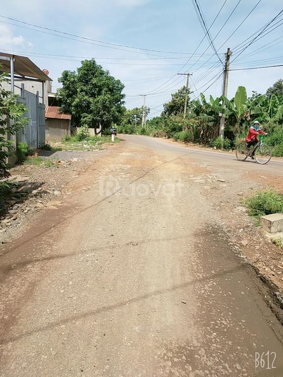Chính chủ cần bán lô đất vị trí đẹp, giá rẻ huyện Trảng Bom, Đồng Nai.