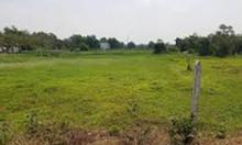 Đất vườn Củ Chi chính chủ diện tích 500m2