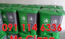 Ghim trên thùng rác nhựa 2 ngăn composite