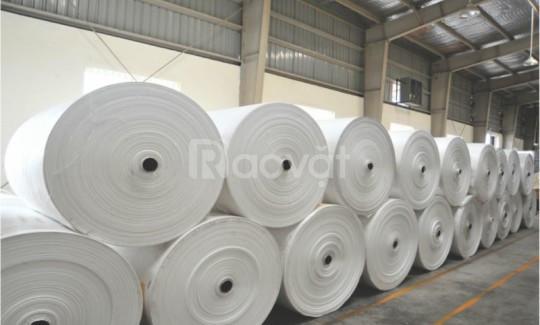 Manh PP dệt, vải dệt PP màu trắng