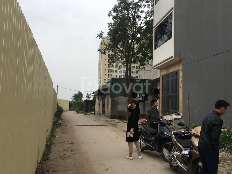 Đất Ngô Xuân Quảng, Trâu Quỳ, Gia Lâm, 35m2, đường trước nhà 5m