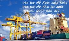 Khóa học nghiệp vụ khai hải quan Đà Nẵng