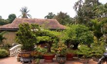 Chính chủ bán biệt thự nghỉ dưỡng 16x58m, MT Bình Nhâm, Thuận An