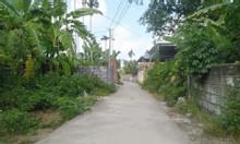 Sở hữu ngay mảnh đất Đẹp tại Hoa Động - Thuỷ Nguyên chỉ với 520 triệu