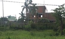 Bán 100m2 đất thổ cư đường số 12 khu TDC Tân Hương