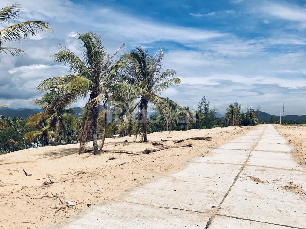 Đất nền sổ đỏ 3 mặt biển Phú Yên - Chỉ vài bước chân là chạm đến biển (ảnh 6)