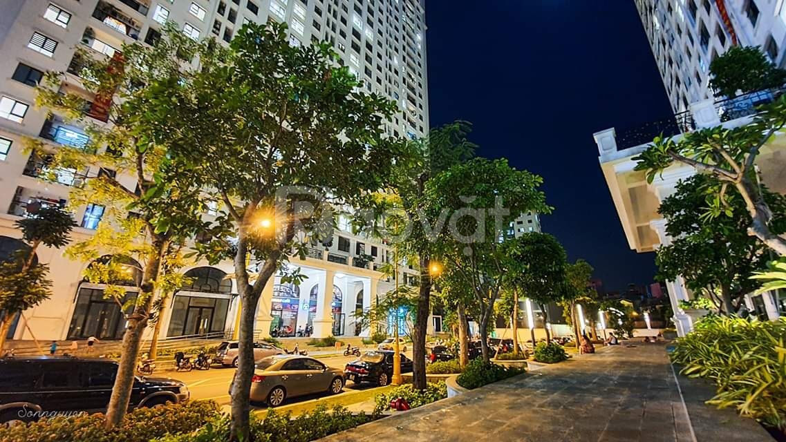 Chung cư Trung tâm Hoàng mai, chung cư Hoàng Mai, ở ngay chỉ 26tr/1m2
