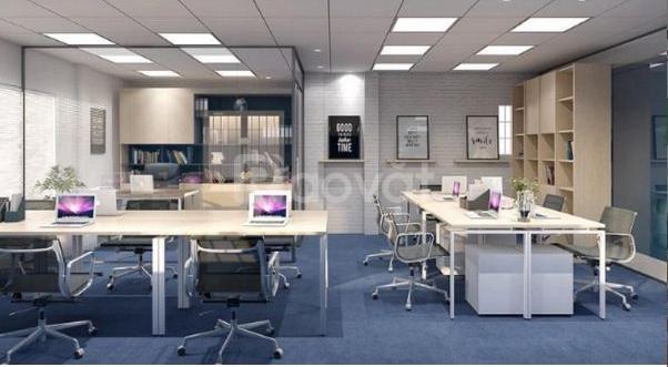 Văn phòng mới, toà nhà 8 tầng 2 thang máy