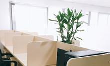 Cho thuê văn phòng trọn gói, chỗ ngồi làm việc tại Cầu Giấy