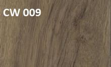 Chương trình giảm giá 50% sàn vinyl vân gỗ cao cấp Armstrong