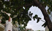 Cần bán gấp nhà C4 Thích Quảng Đức, Phú Nhuận, HXH 97m2, giá rẻ