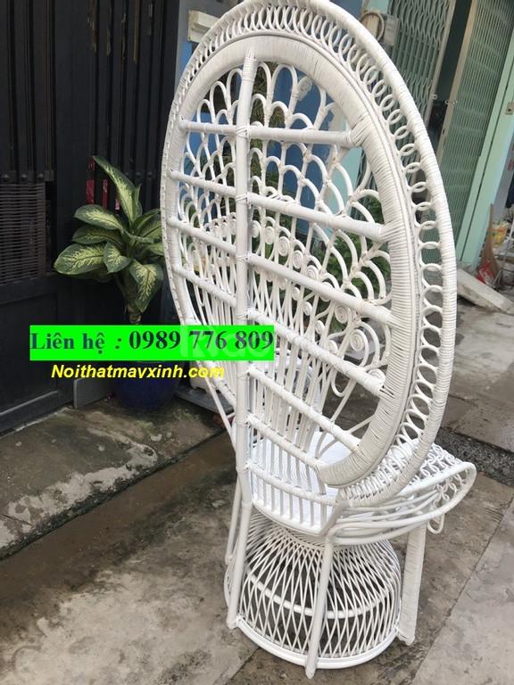 Peacock chair vietnam