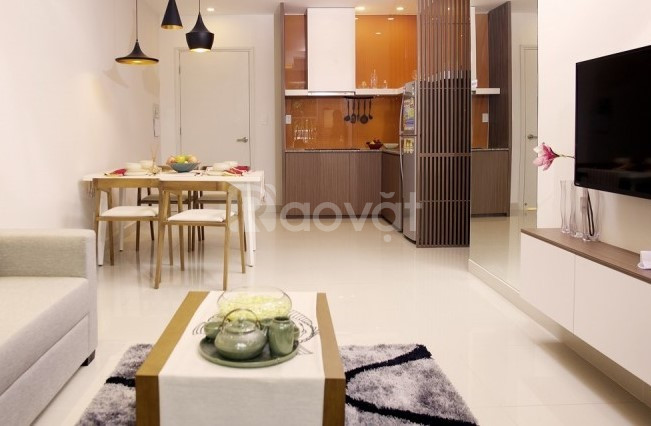 Cho thuê căn hộ 1PN Full nội thất trung tâm Hải Châu