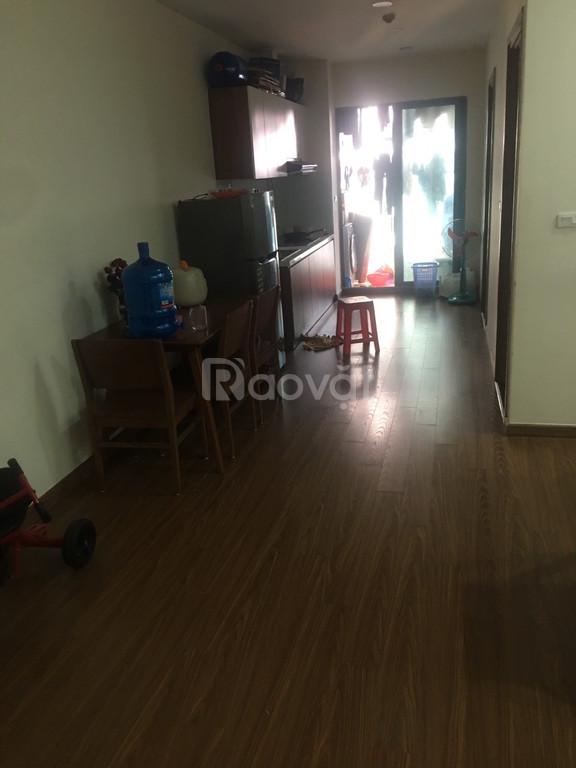 Chính chủ căn hộ 55m2 chung cư Ecogreen city