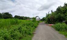 Mua đất tặng sổ hồng, ra nhanh 1000m2 đất vườn giá 1tỷ3.