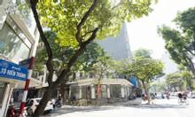 Bán nhà mặt phố Tô Hiến Thành 152m2.