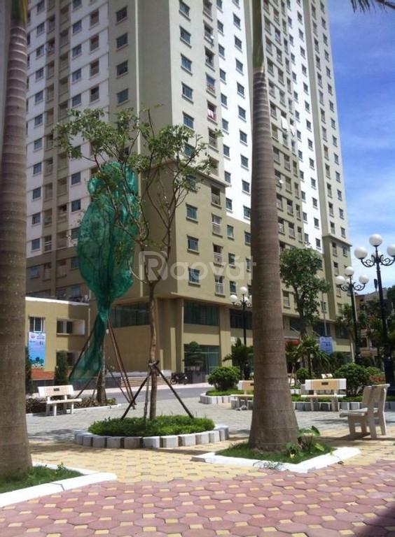 Cho thuê Chưng cư cao cấp 125D Minh Khai - Hai Bà Trưng - Hà Nội