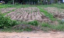 Chính chủ cần bán lô đất đô thị 2 MT, giá tốt tại TT Thủ Thừa,Long An.