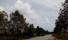 Bán 1200m2 thổ cư tiện làm kho nhà xưởng ngay khu đô thị Mỹ Phước 3