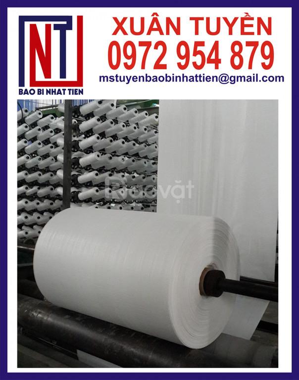 Vải PP dạng cuộn dùng để bao bọc, bảo quản dây cáp điện