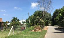 Bán 500m đất vườn trong đó có 300 thổ, xã Thái Mỹ huyện Củ Chi.