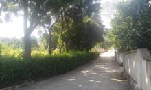 Bán đất Phù Long, 2000m2 đất Giá 7.6 tỷ.