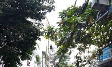 Bán nhà 1/ đường số M1 Bình Hưng Hoà, Bình Tân 100m2, chỉ hơn 50tr/m2, đường nhựa 8m