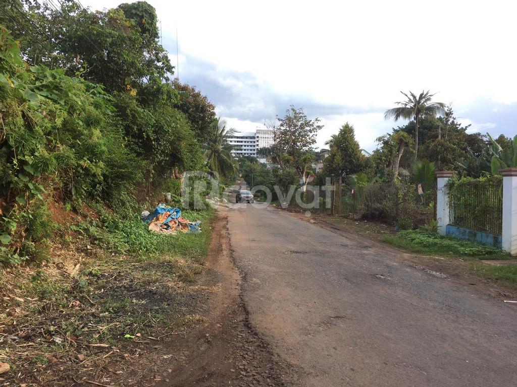 Đất hai mặt tiền kinh doanh Tuệ Tĩnh TP BMT