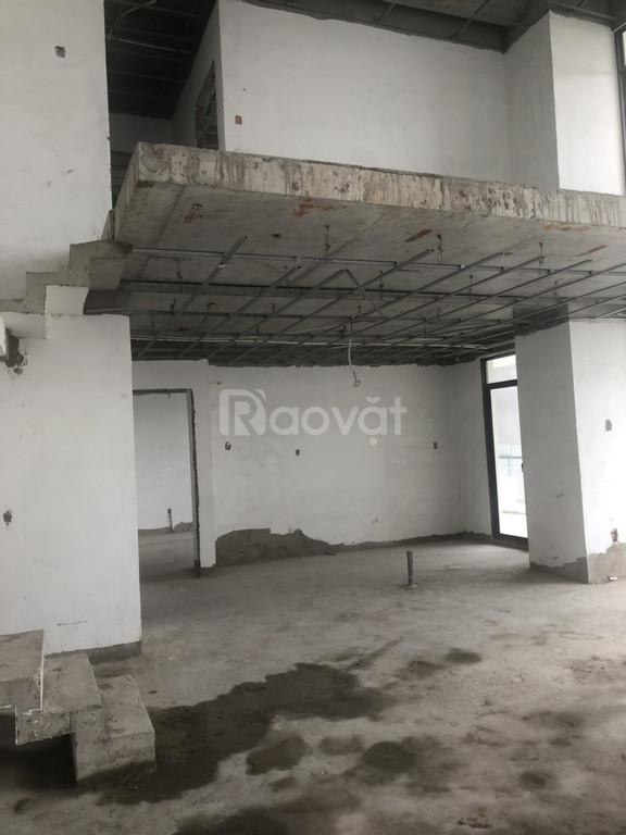 Sở hữu ngay căn hộ Duplex 230m2 tại La Astoria Quận 2 giá chỉ 23tr/m2 (ảnh 3)