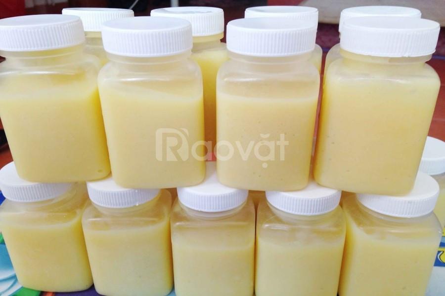 Bán sỉ lẻ sữa ong chúa tươi uy tín tại trang trại Lâm Đồng