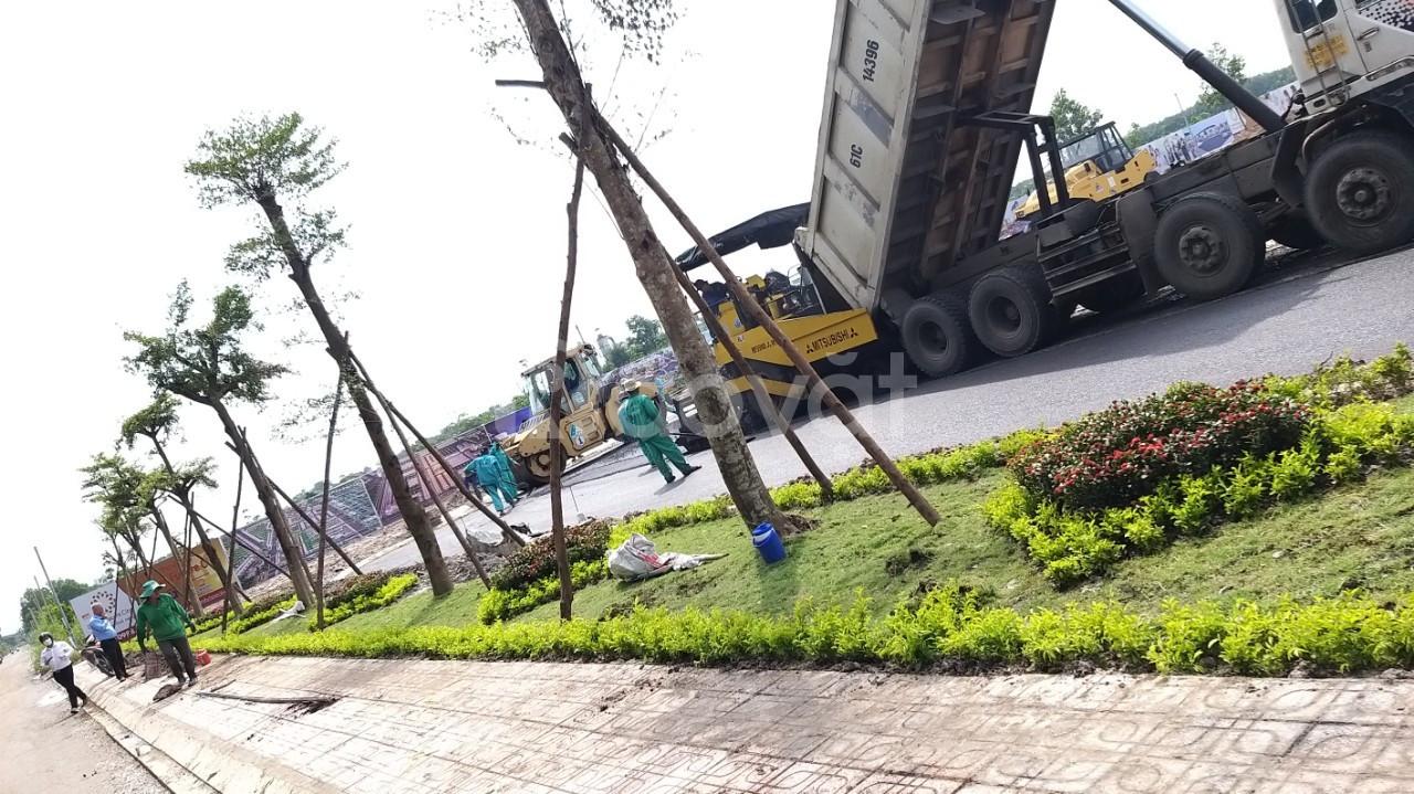 Đất TTHC huyện Bàu Bàng