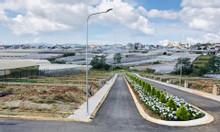 Dự án đất vàng đẹp - villa town p8 Đà Lạt (100% đất xd)