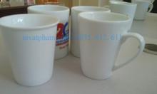 In gốm sứ bộ ấm trà quà tặng tại Hội An Quảng Nam