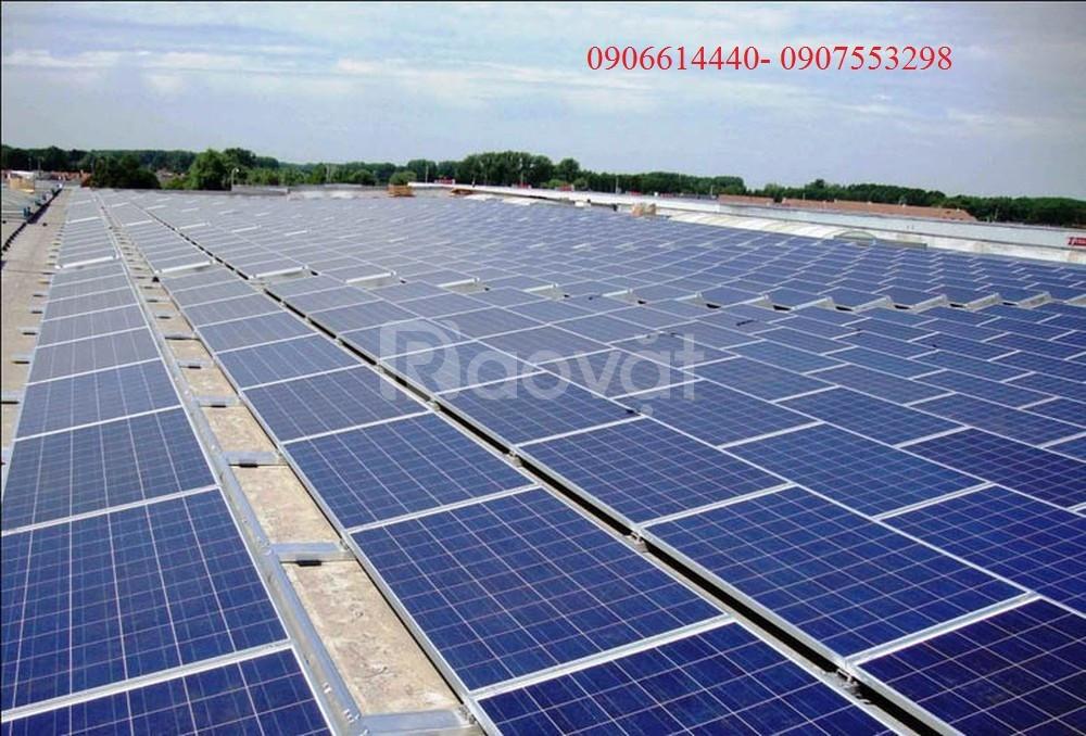 Tư vấn các loại Pin năng lượng mặt trời Poly, Mono tại TPHCM giá tốt