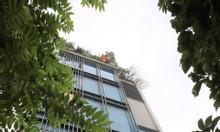 Cho thuê văn phòng cực đẹp mặt phố Thiên Hiền - Giá thỏa thuận hợp lý