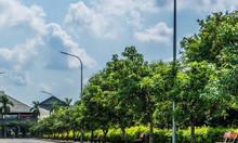 Đầu tư sinh lời cùng dự án Eco Gardenia Thủy Nguyên Hải Phòng