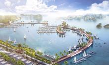 Cần bán 10 lô ngoại giao dự án TTP Cẩm Phả -  view vịnh Bái Tử Long