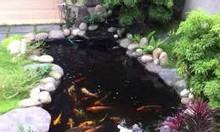 Hồ cá koi, thiết kế bể lọc hồ cá koi