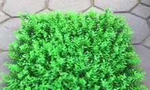 Cỏ nhựa trang trí tường giá rẻ tại Quảng Ninh