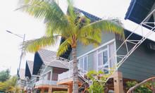 Dự án Biệt thự Eco Villa, trung tâm thủ phủ du lịch Hồ Tràm