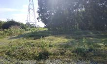 Bán đất sổ đỏ 478m2 2 mặt tiền Long Phước, Long Thành, gần sân bay