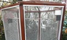 Làm chuồng chim aviary