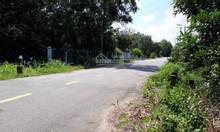 15X40 đất lô góc Góc Chàng, Củ Chi , SHR ,3tỷ6 triệu.
