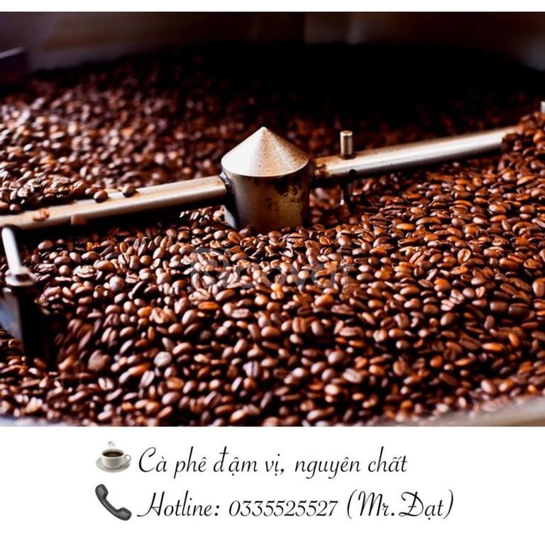 Cà phê rang xay hạt sạch không tẩm ướp