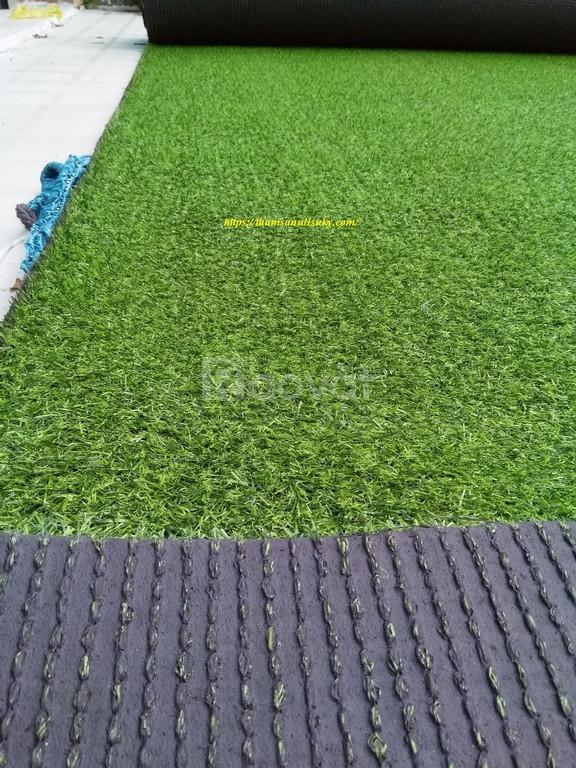 Thảm cỏ nhân tạo lót sàn nhà giá rẻ HCM, mời bạn đến mua chỗ tin cậy