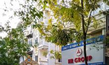 Bán nhà liền kề TT7 khu đô thị Văn Quán, Hà Đông. DT 98m