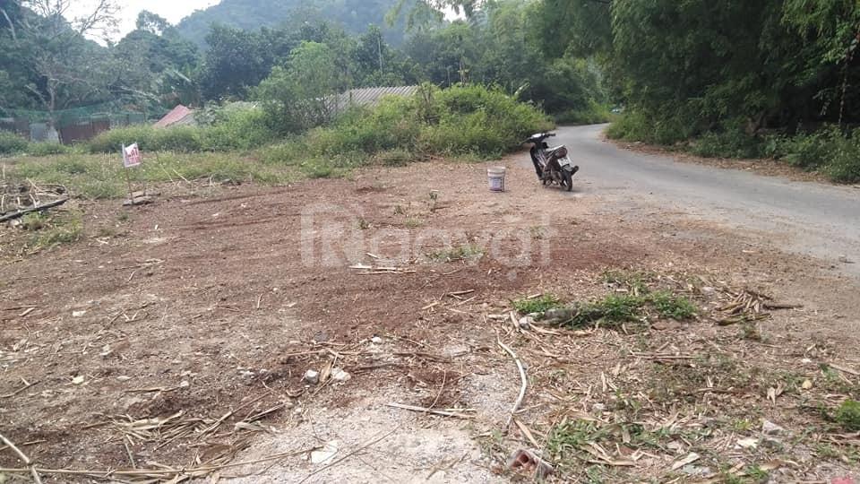 Bán đất mặt đường Trân Châu 1000 giá 15 triệu 1 m2